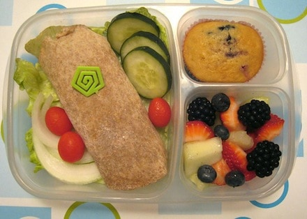healthy easy lunches perfect for school that are affordable