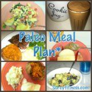 paleo meal plan using short prep times