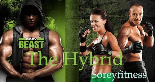 Body Beast Combat Hybrid Workout Schedule 12-Week Calendar