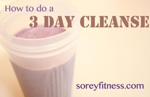 Doing a 3 Day Cleanse – Outline of my Cleanse & Results