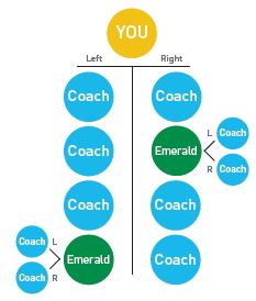 Diamond Beachbody Coach