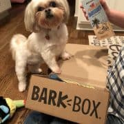 BarkBox Reviews - Roxy Loved it!