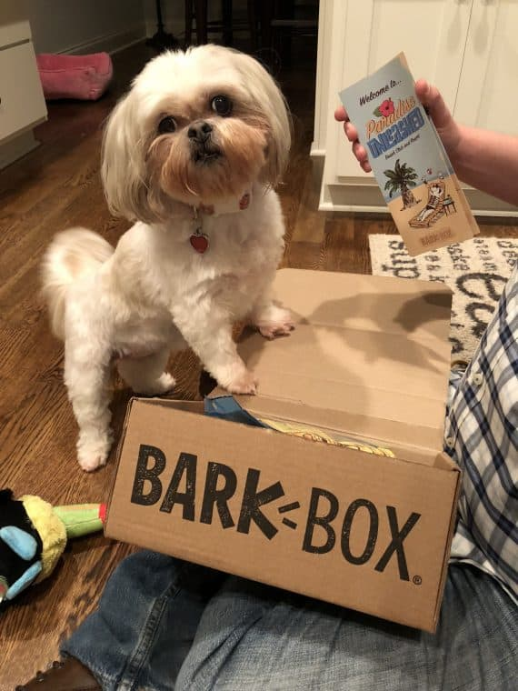 BarkBox Review: Is BarkBox Worth It REALLY?