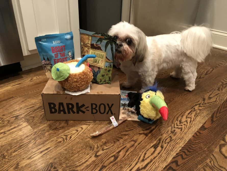 What Comes in BarkBox