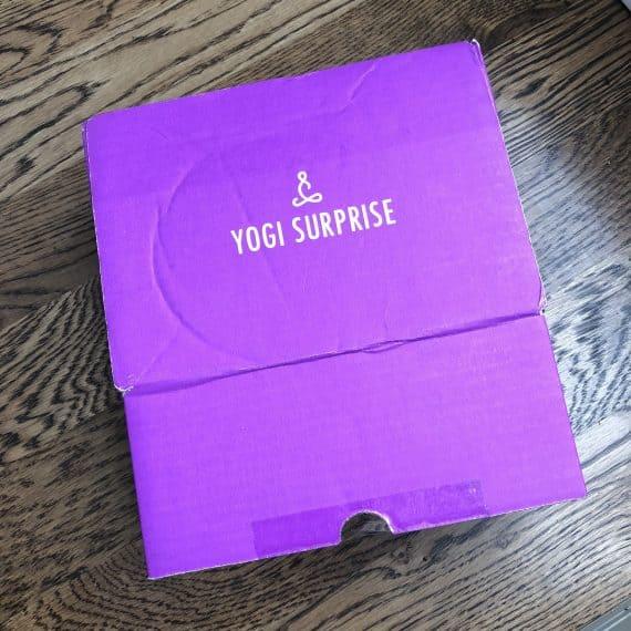Yogi Surprise reviews June 2018