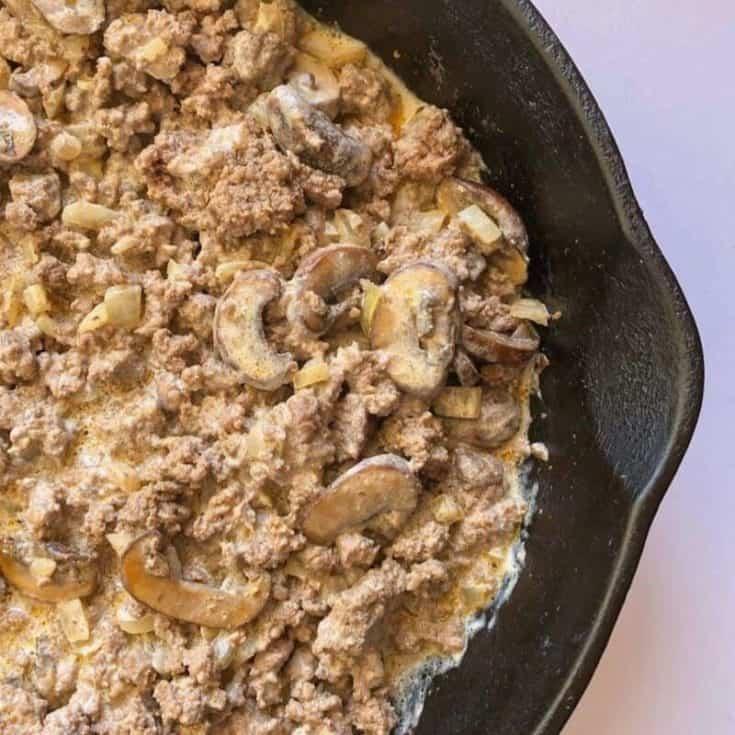 2b mindset beef stroganoff dinne recipe